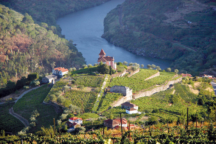 Amawaterways Douro valley