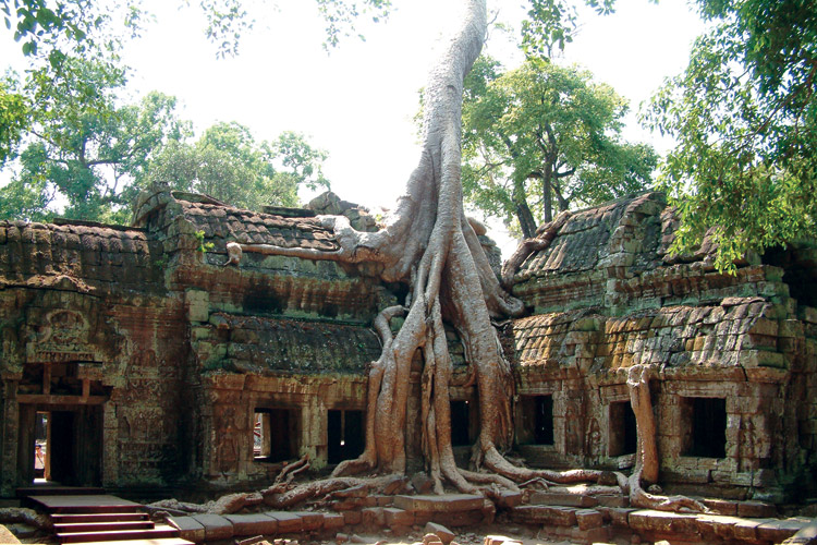 Amawaterways Ta Prohm